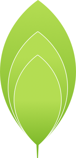 Green leaf graphic